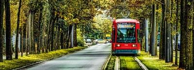 Straßenbahn fährt eine Allee entlang
